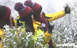 Ảnh: Du khách nườm nượp đổ về Sa Pa ngắm tuyết rơi trắng xóa