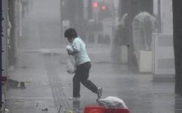 Sức gió mạnh kỷ lục, bão Trami 'càn quét', gây thiệt hại lớn ở Tokyo, Nhật Bản