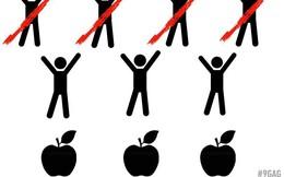 Bài toán chia đều 7 quả táo cho 3 người khiến 10.000 dân mạng tranh cãi kịch liệt vẫn không ra đáp án