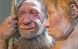 Phát hiện mẩu xương bé gái chết cách đây 115.000 năm do bị chim cổ đại ăn thịt