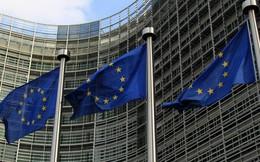 Cáo buộc Nga sử dụng vũ khí hóa học, EU sẽ phê chuẩn các lệnh trừng phạt mới