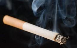 Vì sao không cấm sản xuất thuốc lá?