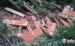 """Quảng Bình: Rừng đệm di sản thế giới Phong Nha - Kẻ Bàng bị """"xẻ thịt"""""""