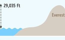 8 câu hỏi ai cũng trả lời nhanh như chớp mà sai bét: Núi cao nhất hành tinh hóa ra không phải Everest!