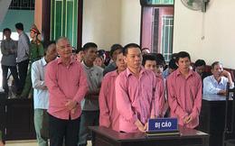 """Xử vụ phá rừng lớn nhất Bình Định: 9 """"lâm tặc"""" nhận 81 năm tù"""