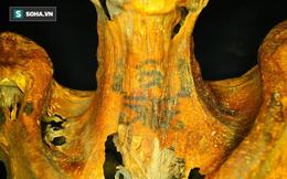 Bật mí thêm về xác ướp của phụ nữ Ai Cập với hình xăm 3.000 năm tuổi chưa phai