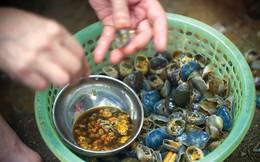 Món ngon, thuốc quý từ cua đồng