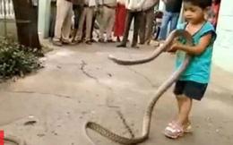 Bé trai 3 tuổi chơi đùa cùng 2 con rắn khổng lồ