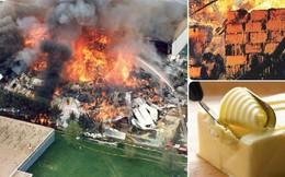 Ai mà ngờ được món bơ thơm lừng béo ngậy lại từng gây ra tai nạn nghiêm trọng nhường này