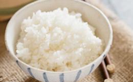 Biết cách nấu cơm của người Nhật bạn cũng sẽ học được nhiều mẹo hay!