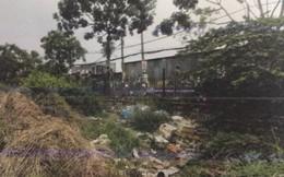 Công an tìm nhân chứng vụ heo rừng tha thi thể bé trai sơ sinh ở Sài Gòn
