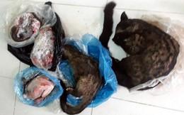Nữ Phó Chủ tịch Mặt trận xã rao bán động vật hoang dã trên facebook