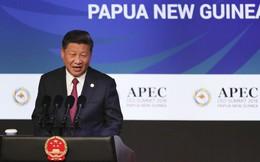 """Phát biểu 40' tại APEC: Ông Tập """"nhắc khéo"""" Mỹ về kết cục bi thảm của chiến tranh thương mại"""