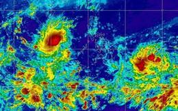 Nhiều khả năng bão số 9 sẽ hình thành trong vài ngày tới