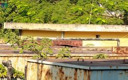 """Trạm xử lý nước thải ở Hà Nội """"đắp chiếu"""" sau 10 năm xây dựng"""
