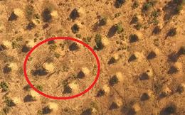 Công trình có lượng đất bằng 4.000 kim tự tháp Giza: Chủ nhân lại không phải con người?