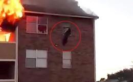 Chung cư bị cháy, người mẹ liền ném con qua cửa sổ và điều kỳ diệu đã xảy ra