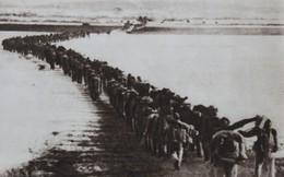 Giải mã thất bại muối mặt của CIA trong vụ 40 vạn quân Trung Quốc tràn sang Triều Tiên