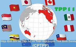Hiệp định CPTPP tạo áp lực cải cách thể chế rất lớn