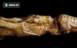 7 phát hiện khảo cổ chưa thể giải thích: Đứng đầu là bức tượng 13.000 năm tuổi