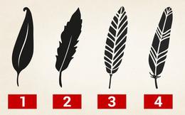 Tố chất lãnh đạo bẩm sinh ẩn tại 1 trong 5 chiếc lông này: Hãy chọn và xem kết quả
