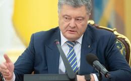 """Nghị sĩ Ukraine mượn chuyện """"chuột bị dồn vào góc tường"""" của TT Putin để mỉa mai TT Poroshenko?"""