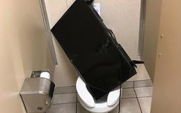 Những đồ vật kì lạ bạn không thể ngờ nhưng lại xuất hiện bên trong toilet của nam giới