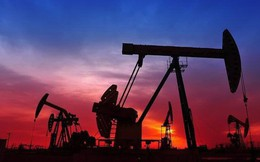 Giá dầu xuống đáy trong hơn 1 năm qua