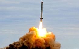 """Hình ảnh """"tên lửa gây tranh cãi"""" 9M729 của Nga"""