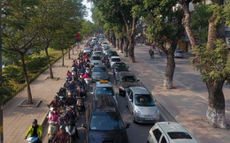 Hà Nội chuẩn bị chặt, dịch chuyển hơn 400 cây xanh trên đường Láng