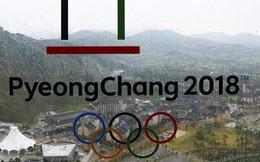 Thế vận hội bị tấn công mạng, ban tổ chức quyết không tiết lộ thủ phạm