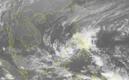Ban chỉ đạo Trung ương họp khẩn khi bão Sanba chuẩn bị vào Biển Đông