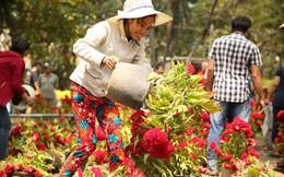 Không bán hết hàng trưa 30 Tết, tiểu thương dùng gậy đập nát chậu hoa, vứt vào thùng rác