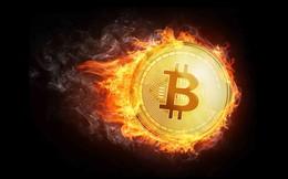 Điểm lại những đợt tăng giảm đáng chú ý của bitcoin trong quá khứ
