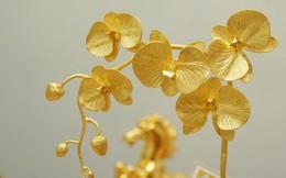 Tận mục chậu lan Tết đúc từ vàng giá 1 tỷ đồng của đại gia Hà Nội