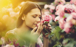 Phụ nữ nên nhớ, hạnh phúc của mình mới là việc đáng lưu tâm