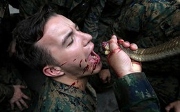 24h qua ảnh: Lính Mỹ uống máu rắn hổ mang luyện kỹ năng tồn tại