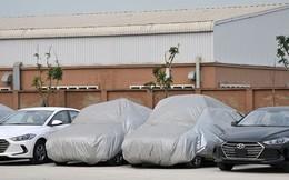 Đang tranh đua vị trí số 1, lượng xe nhập khẩu từ Indonesia về số 0