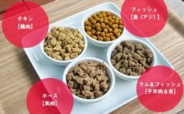 Nếm thức ăn cho chó, truy lùng mùi hôi và 5 công việc kỳ lạ chỉ có ở Nhật Bản