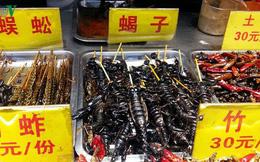 """Bọ cạp, rắn, sâu... """"dọa"""" thực khách yếu tim trên phố ẩm thực Trung Sơn"""