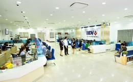 Lộ diện ngân hàng trả lương cao nhất Việt Nam