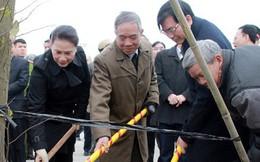 Chủ tịch Quốc hội dự lễ phát động Tết trồng cây tại Hải Dương