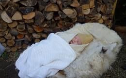 Cho trẻ ngủ ngoài trời: Phương pháp giáo dục lạ nhưng mang đến tác dụng rất tuyệt vời