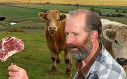 Điều gì sẽ xảy ra nếu loài bò chưa từng tồn tại trên Trái đất này?