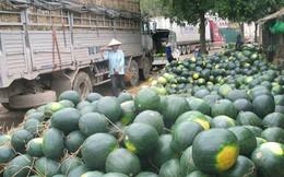 """Thủ tướng yêu cầu """"giải cứu"""" nông sản ách tắc tại Tân Thanh"""