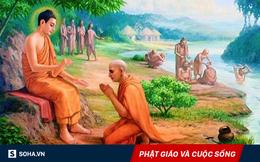"""""""Làm sao để có cuộc sống an lành?"""" và câu trả lời của Đức Phật, nằm trong chỉ 1 hình ảnh!"""