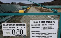 Lao động Việt Nam chỉ được trả hơn 400.000 đồng/ngày để dọn dẹp khu nhiễm xạ Nhật Bản