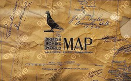 Đội quân bồ câu của quân đội Anh trong Chiến tranh thế giới lần 2