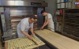 Làm việc quá chăm chỉ, chủ tiệm bánh mì bị phạt hơn 82 triệu đồng