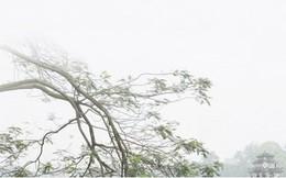 Dự báo thời tiết ngày 18/3: Hà Nội có mưa rào, Nam Bộ trời nắng